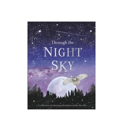 Through the Night Sky
